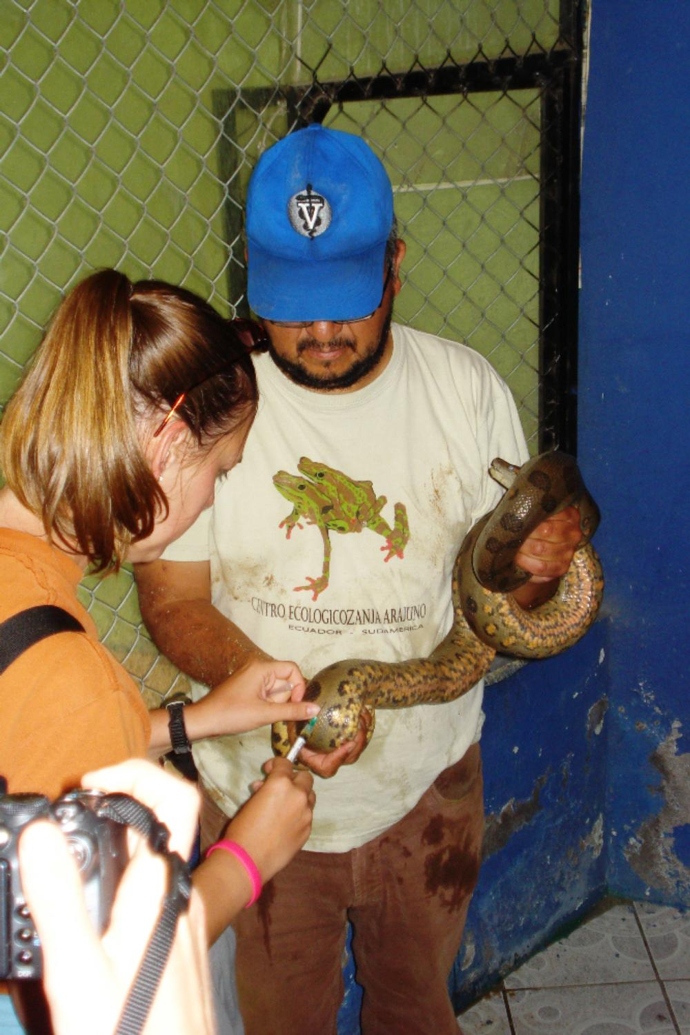 snake vaccination