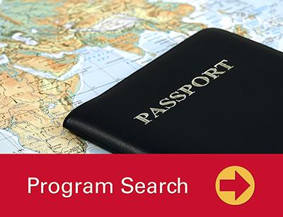 Program Search